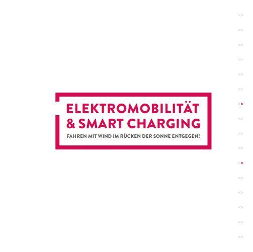 Smart Charging auf Deutsch